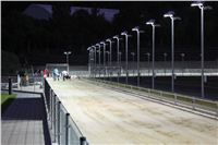 night_test_race_Greyhound_Park_Motol_IMG_8719.JPG