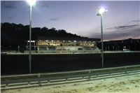 night_test_race_Greyhound_Park_Motol_IMG_8745.jpg