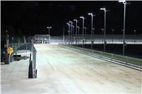 night_test_race_Greyhound_Park_Motol_IMG_8765.JPG