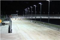 night_test_race_Greyhound_Park_Motol_IMG_8775.JPG
