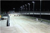 night_test_race_Greyhound_Park_Motol_IMG_8777.JPG