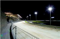 night_test_race_Greyhound_Park_Motol_DSC_8167.jpg