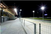 night_test_race_Greyhound_Park_Motol_DSC_8176.jpg