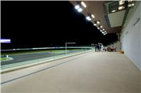 night_test_race_Greyhound_Park_Motol_DSC_8183.jpg