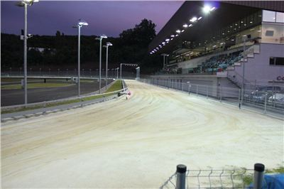 night_test_race_Greyhound_Park_Motol_IMG_8659.JPG
