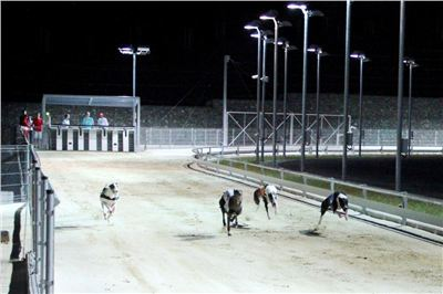 night_test_race_Greyhound_Park_Motol_IMG_8779-v.JPG