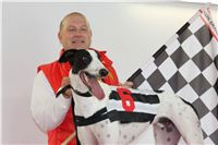 Dolce_Greyhound_Park_Motol_Czech_Racing_CGDF_2.jpg
