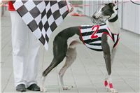 Prague_racing_Greyhound_Park_Motol_CGDF_NQ1M0106.JPG