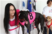 Trio_race_Greyhound_Park_Motol_CGDF_IMG_0021.JPG
