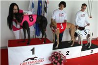 Trio_race_Greyhound_Park_Motol_CGDF_IMG_0023.JPG