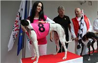 Trio_race_Greyhound_Park_Motol_CGDF_IMG_0182.JPG