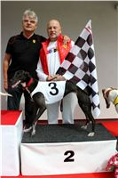 Trio_race_Greyhound_Park_Motol_CGDF_IMG_0197.JPG