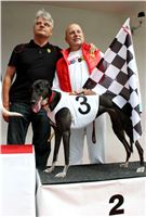 Trio_race_Greyhound_Park_Motol_CGDF_IMG_0201.JPG