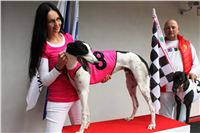 Trio_race_Greyhound_Park_Motol_CGDF_IMG_0229.JPG