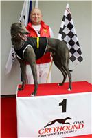 Trio_race_Greyhound_Park_Motol_CGDF_IMG_0318.JPG