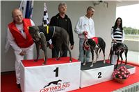 Trio_race_Greyhound_Park_Motol_CGDF_IMG_0360.JPG