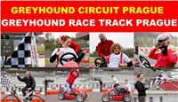 Race_Circuits_Greyhound_Park_Motol_CGDF.jpg