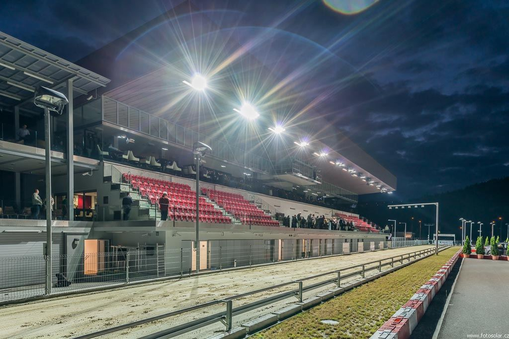 http://www.cgdf.cz/user_data/cms/fotogalerie/01667/large/Greyhound_Park_Motol_night_race_2130626_042.jpg