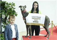 Lexus_Praha_Greyhound_Race_Winner_Gucci_CGDF_DSC_7877.jpg