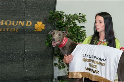 Lexus_Praha_Greyhound_Race_Gucci_Winner_CGDF_256.jpg