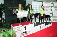 10. Grand_Opening_Greyhound_Park_Motol_Prague_Winner_Greyhound_Racing_20130913-RF__0915.jpg