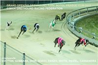 2. Grand_Opening_Greyhound_Park_Motol_Prague_CGDF.jpg