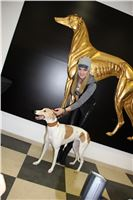 Grand_Opening_Greyhound_Park_Motol_Prague_G.Guncikova_IMG_3899.JPG
