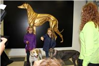 Grand_Opening_Greyhound_Park_Motol_Prague_IMG_3885.JPG