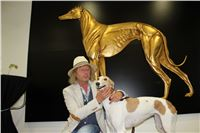 Grand_Opening_Greyhound_Park_Motol_Prague_Nagy_IMG_3958.JPG