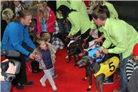 Grand_Opening_Greyhound_Park_Motol_Prague_Sporcl_IMG_4231.JPG