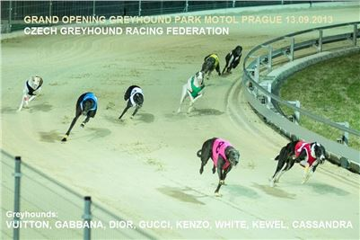 2-Grand_Opening_Greyhound_Park_Motol_Prague_CGDF.jpg