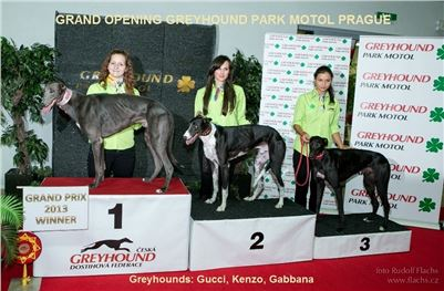 8-Grand_Opening_Greyhound_Park_Motol_Prague_20130913-RF__0892.jpg