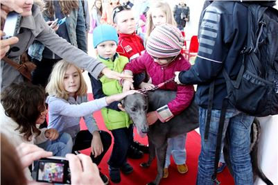 4. Winner_Big_Daddy_Gucci_Greyhound_Park_Prague_IMG_1544.JPG