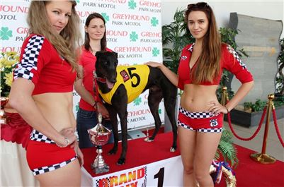 2. Grand_Prix_Greyhound_Park_Motol_Prague_IMG_5880.JPG