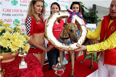 Grand_Prix_Greyhound_Park_Motol_Prague_IMG_5738.JPG