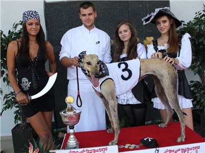 1_Dostihy_chrtu_Secret_Race_Greyhound_Park_Motol_2_IMG_0143.JPG