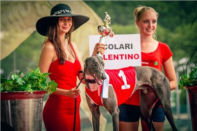 01_Chrti_dostihy_Greyhound_Racing_Park_Praha_Czech_International_Derby_2551.jpg