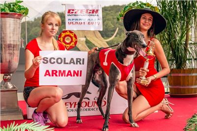 02_Chrti_dostihy_Greyhound_Racing_Park_Praha_Czech_International_Derby_2359.jpg