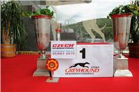 19_Chrti_dostihy_Greyhound_Racing_Park_Praha_Czech_International_Derby_7919.JPG