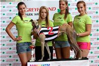 001_07_Chrti_dostihy_Greyhound_Racing_Park_Praha_Bookmakers_CuP_IMG_9962.jpg
