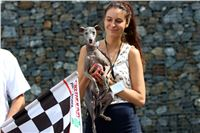 01_Chrti_dostihy_Greyhound_Racing_Park_Praha_Bookmakers_CuP_IMG_9844.jpg