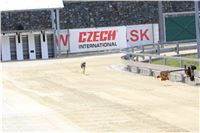 01_Chrti_dostihy_Greyhound_Racing_Park_Praha_Bookmakers_CuP_IMG_9851.jpg
