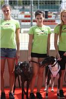 02_Chrti_dostihy_Greyhound_Racing_Park_Praha_Bookmakers_CuP_IMG_9868.jpg