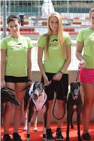 02_Chrti_dostihy_Greyhound_Racing_Park_Praha_Bookmakers_CuP_IMG_9869.jpg
