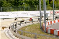 02_Chrti_dostihy_Greyhound_Racing_Park_Praha_Bookmakers_CuP_IMG_9883.jpg