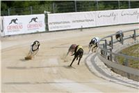 02_Chrti_dostihy_Greyhound_Racing_Park_Praha_Bookmakers_CuP_IMG_9885.jpg
