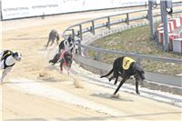 02_Chrti_dostihy_Greyhound_Racing_Park_Praha_Bookmakers_CuP_IMG_9887.jpg