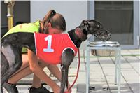 02_Chrti_dostihy_Greyhound_Racing_Park_Praha_Bookmakers_CuP_IMG_9895.jpg