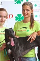 03_Chrti_dostihy_Greyhound_Racing_Park_Praha_Bookmakers_CuP_IMG_9942.jpg
