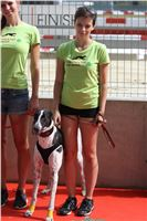 03_Chrti_dostihy_Greyhound_Racing_Park_Praha_Bookmakers_CuP_IMG_9989.jpg